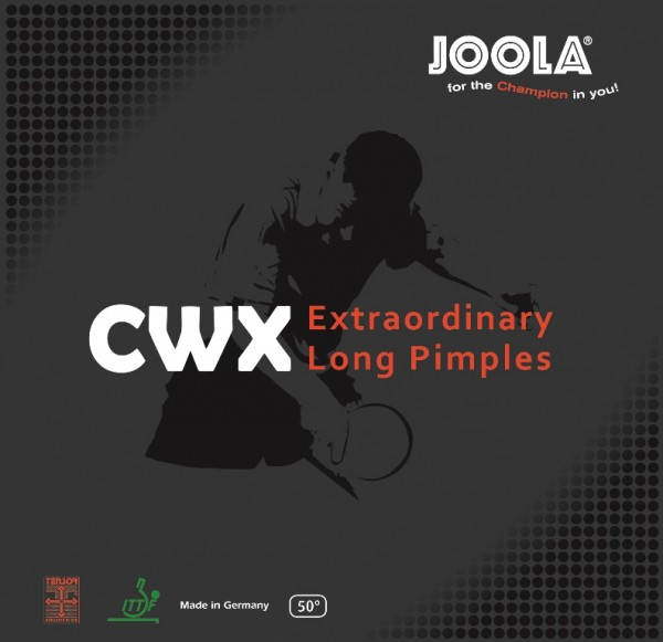 Joola Belag CWX